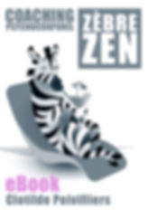 VIGNETTE EBOOK COACHING ZEBRE ZEN 4.jpg