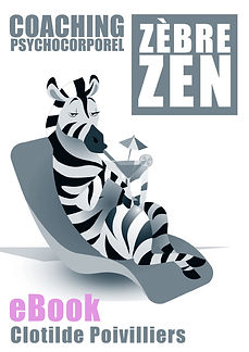 VIGNETTE EBOOK COACHING ZEBRE ZEN 4.jpg