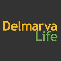 The Shady Sun Delmarva Life