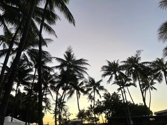 ハワイの伝説:月とバニアンツリー