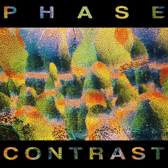 phase contrast (0_00_01_26).jpg