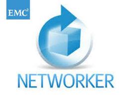 Networker.jpeg