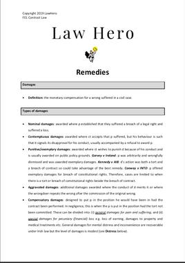 Chap 8 Remedies