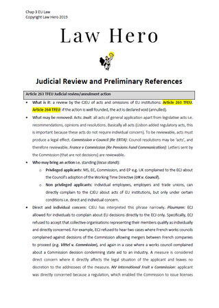 Judicial Review and Preliminary Reference