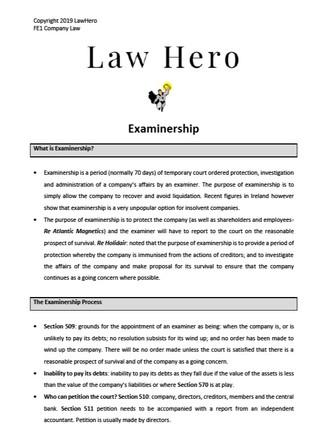Company Law Examinership
