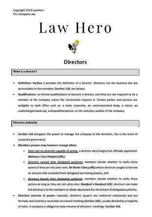Company Law Directors