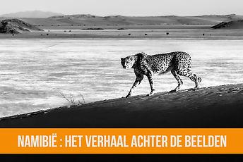 Namib_cover.jpg