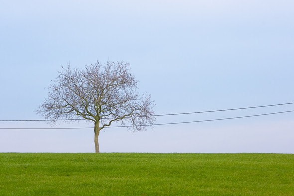 Minimalistische landschappen met een twist
