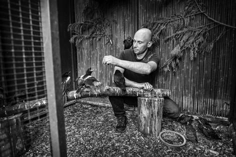 De vogelfluisteraar