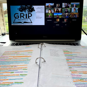 GRIP 2020 (virtual edition)