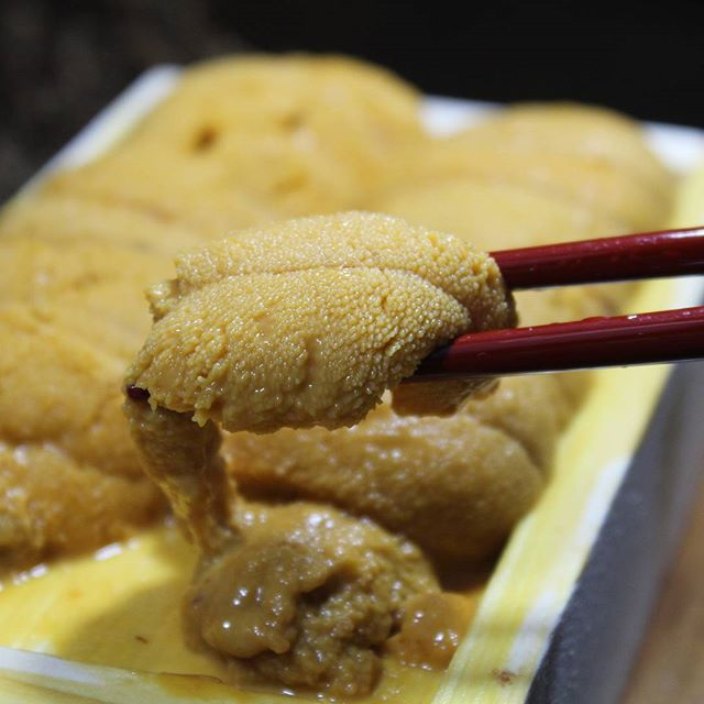 #agamisushi#seaurchin #uni #sashimi