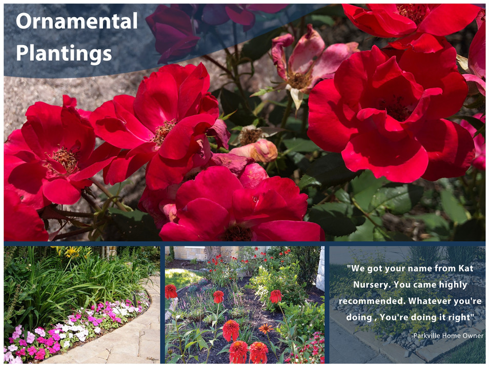 Ornamental Plantings