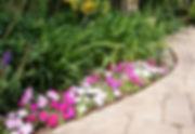 21_seasonal color planting along walkway