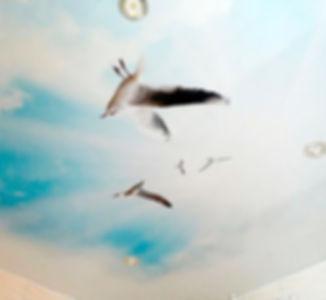 Обшивка-потолка-3д-панелью.jpg