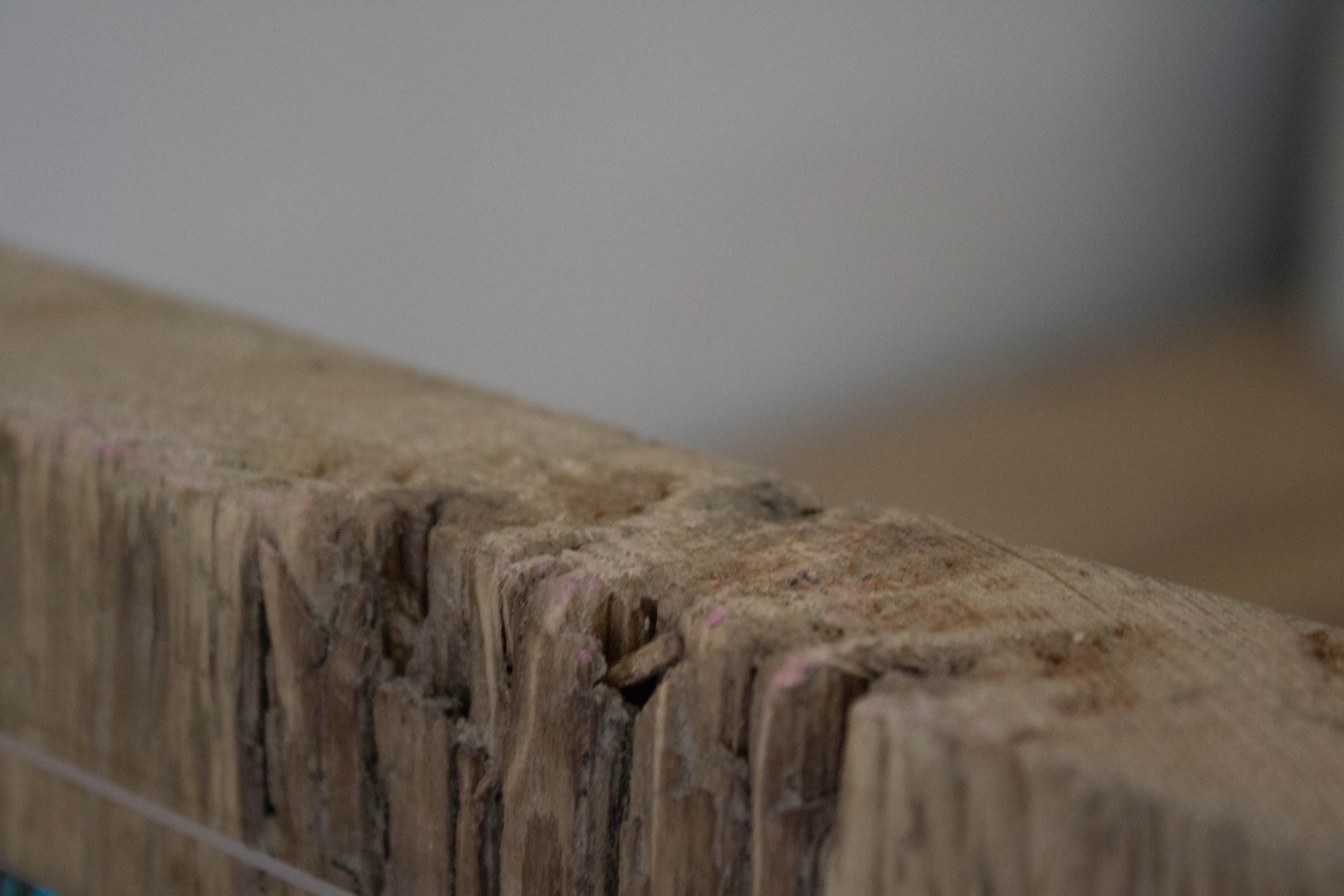 Driftwood sculpture photo block