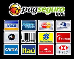 Sr-faztudo pague seus serviços com a maneira mais facil e segura com cartão de credito em até 12x consulte sua bateira e aproveite essa facilidade.