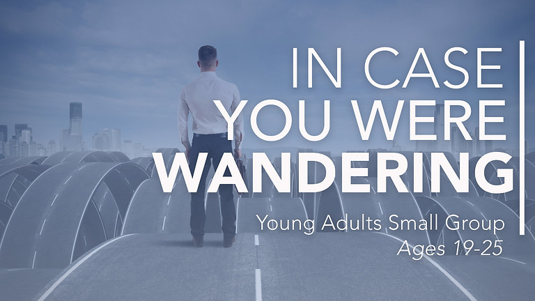 In Case You Were Wandering - Young Adults