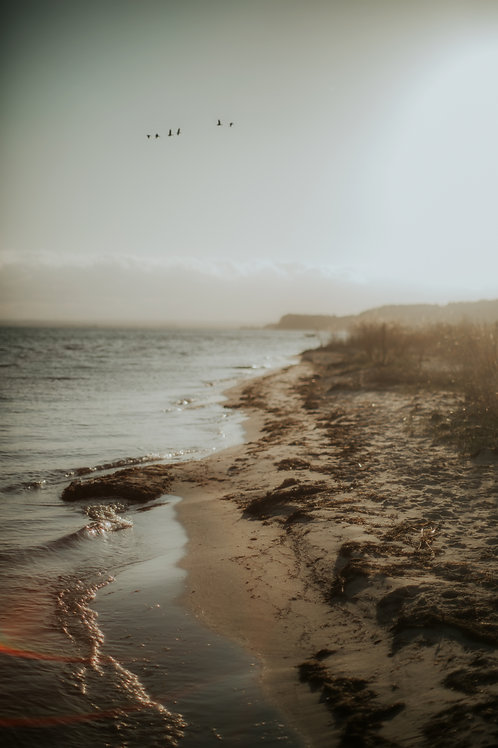 Sea stories 6