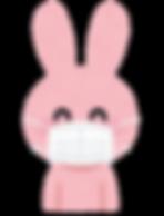 抗菌ウサギ