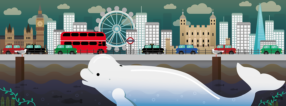 Whale_Thames_FINAL_-02.png