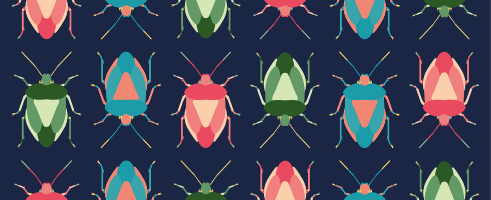 Shield Bug Pattern