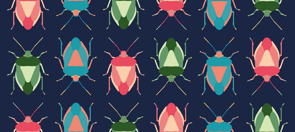 Shield Bug Pattern