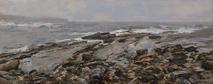 Tidal Edge, Spanish Point.