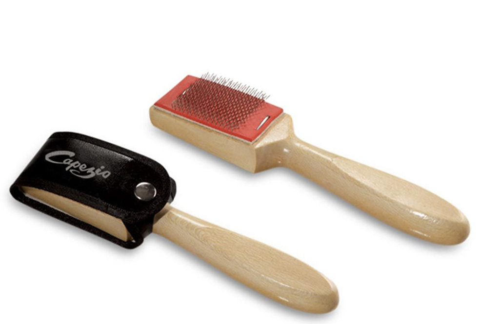 Capezio Suede Ballroom Shoe Brush Style Code BR005