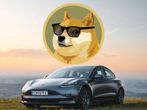 Dogecoin (DOGE) Kullanıcılarına müjde var!