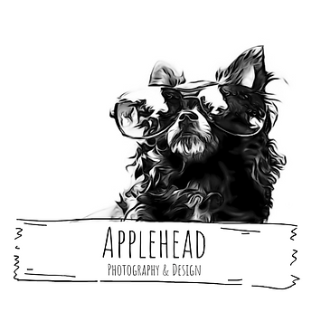 Applehead Photography and Design Logo.pn