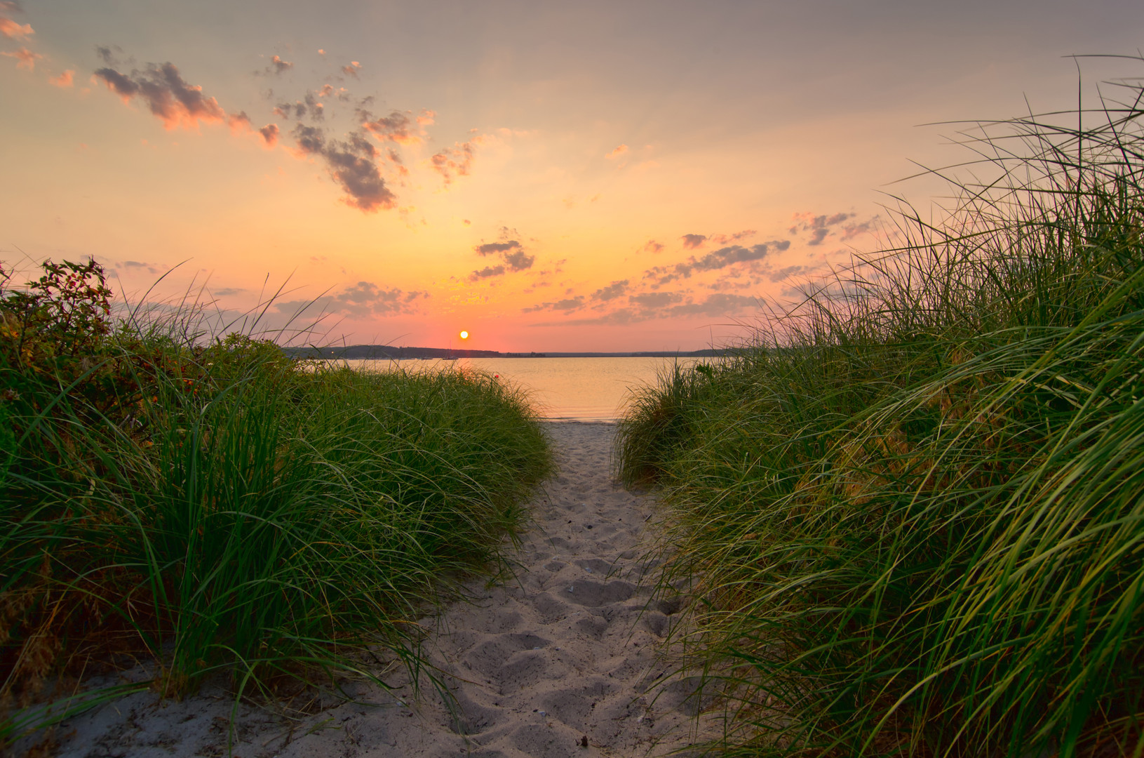 Dunegrass Sunset 8492B.jpg