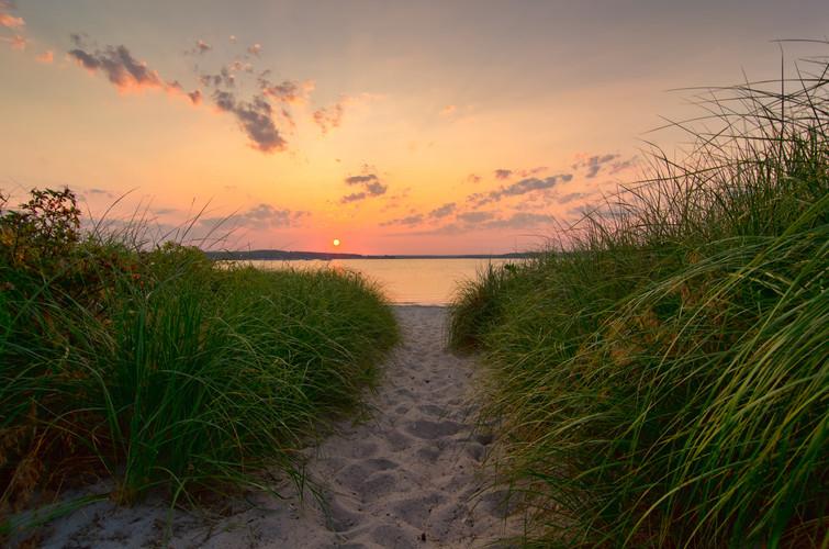 Dunegrass Sunset 8492B.jpg