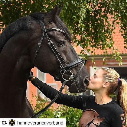 #Repost Hannoveraner Verband e.V.jpe