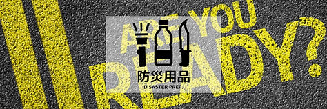 banner_disaster2.jpg
