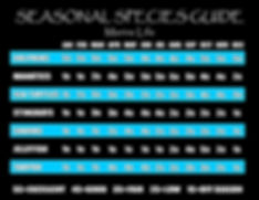 Seasonal Species Marine Life 19.jpg