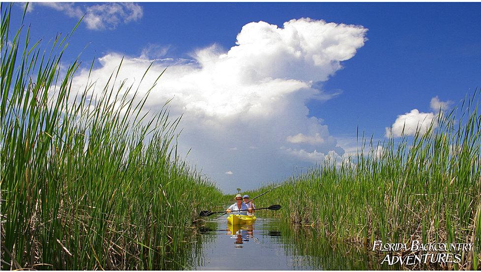 Kayak Tours Ten Thousand Islands