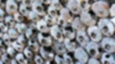 Shell mound.jpg