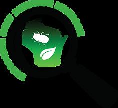 WIFDN logo_1.png