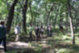 Copy of IMG_1115peoplewalking.jpg