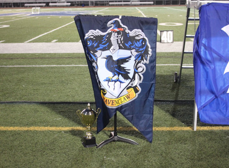 Ravenclaw wins the house cup!