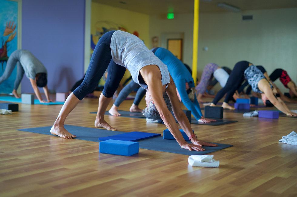 Jano Galindo Yoga - Training.jpg