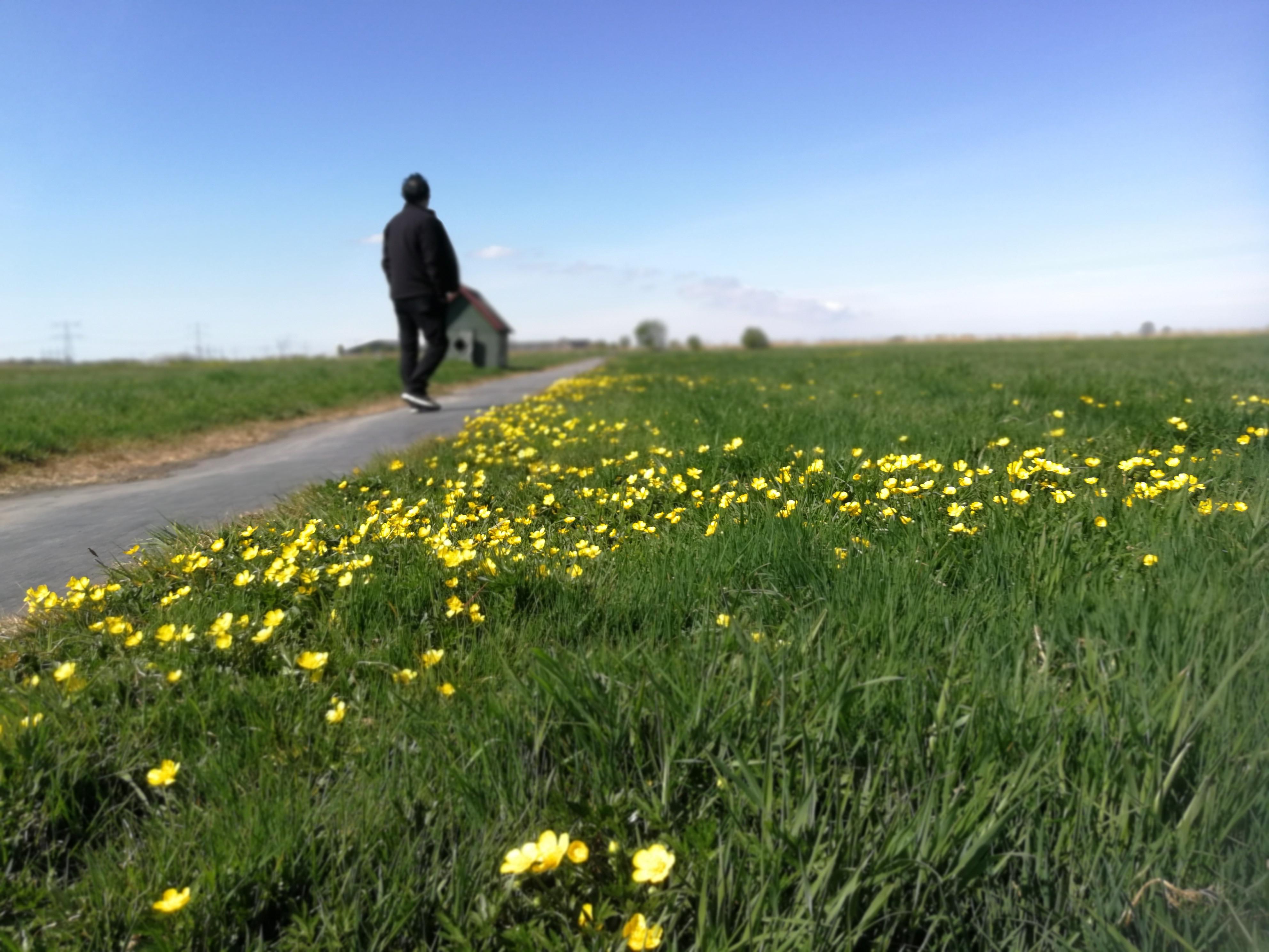 Running / walking meditation in nature