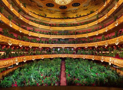 Barcelona Opera House reopens with a performance for over 2 thousand plants