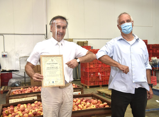 Jewish Community of Porto aids Israeli Food Bank