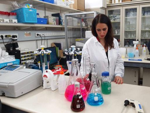 Israel creates organic hand sanitizer using plant waste