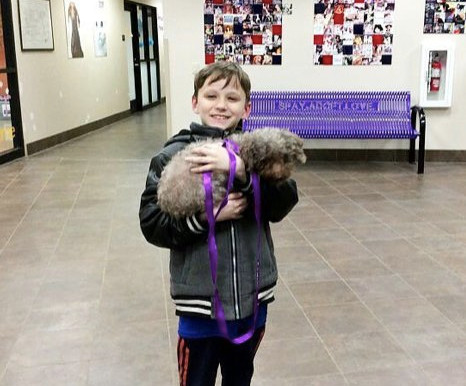 A child adopts the oldest dog in the shelter