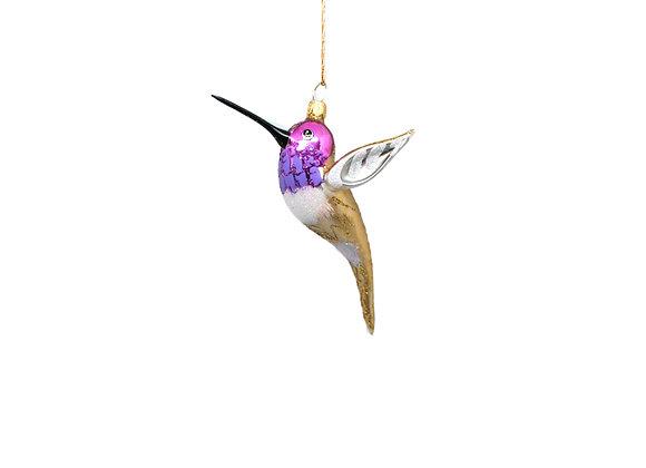 Colibrì viola e oro / Purple and gold hummingbird