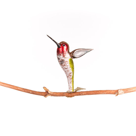 Colibrì / Hummingbird