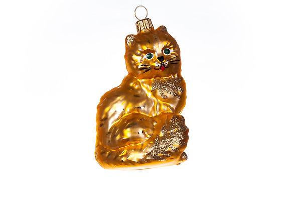Gatto marrone / Brown cat