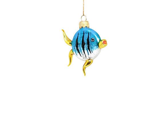 Pesciolino / Little fish